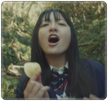 鈴木瑛美子、湖池屋、CM