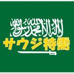 サウジアラビア・サルマン国王の宿泊先はホテルではなく迎賓館、サルジ特需の結果は期待外れ?