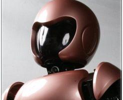 ひとパー、ロボット、ニコット