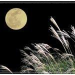 満月の別称なのに秋だけ特別、十五夜の起源とは?数字と夜で表す名前は他にある?