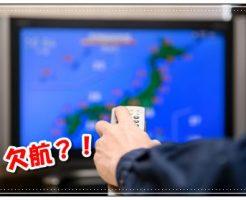 旅行、台風、欠航