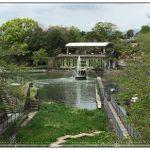 【GW】京都で新緑を満喫!岡崎疎水周辺がおすすめ!スフレの名店も